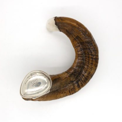 Scottish Ram's Horn Snuff Mull, Historical Trophy With Engravings, Scotland, Dated 1868.