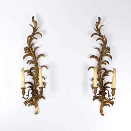 Pair of French Mid-20th Century Gilded Foliate-Form Two-Light Sconces.