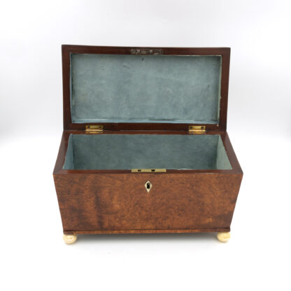 Blue Papered Interior: A Large Trapeze Form Box In Burlwood Yew & Lined With Paper; English, Circa 1820.